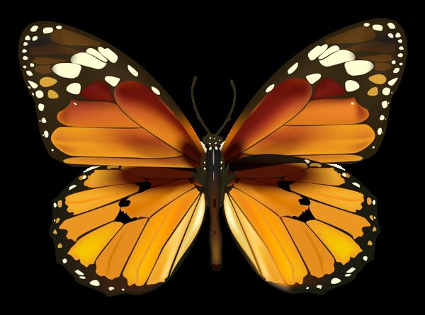 Yellow Butterfly Png Clipart Borboletas Lindas Borboletas Tatuagens Falsas