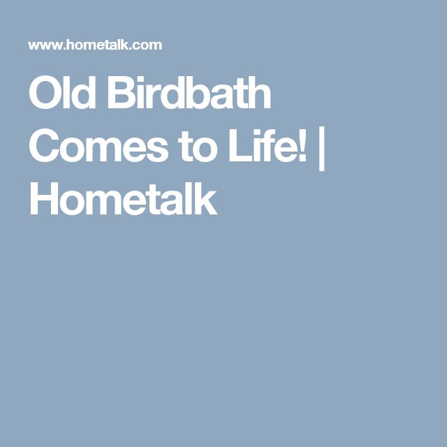 Old Birdbath Comes to Life! | Hometalk