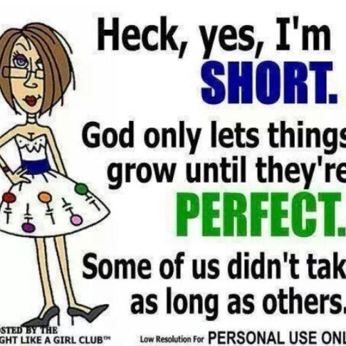 #Sundaynight #humor.  It's always good to #laugh.... | Ruthe McDonald