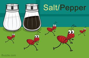 14 Safe and Amazingly Simple Home Remedies to Get Rid of Ants   Ant ...