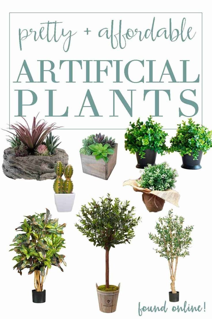Affordable and Oh-So-Real-Looking Artificial Green Plants | Fake ...