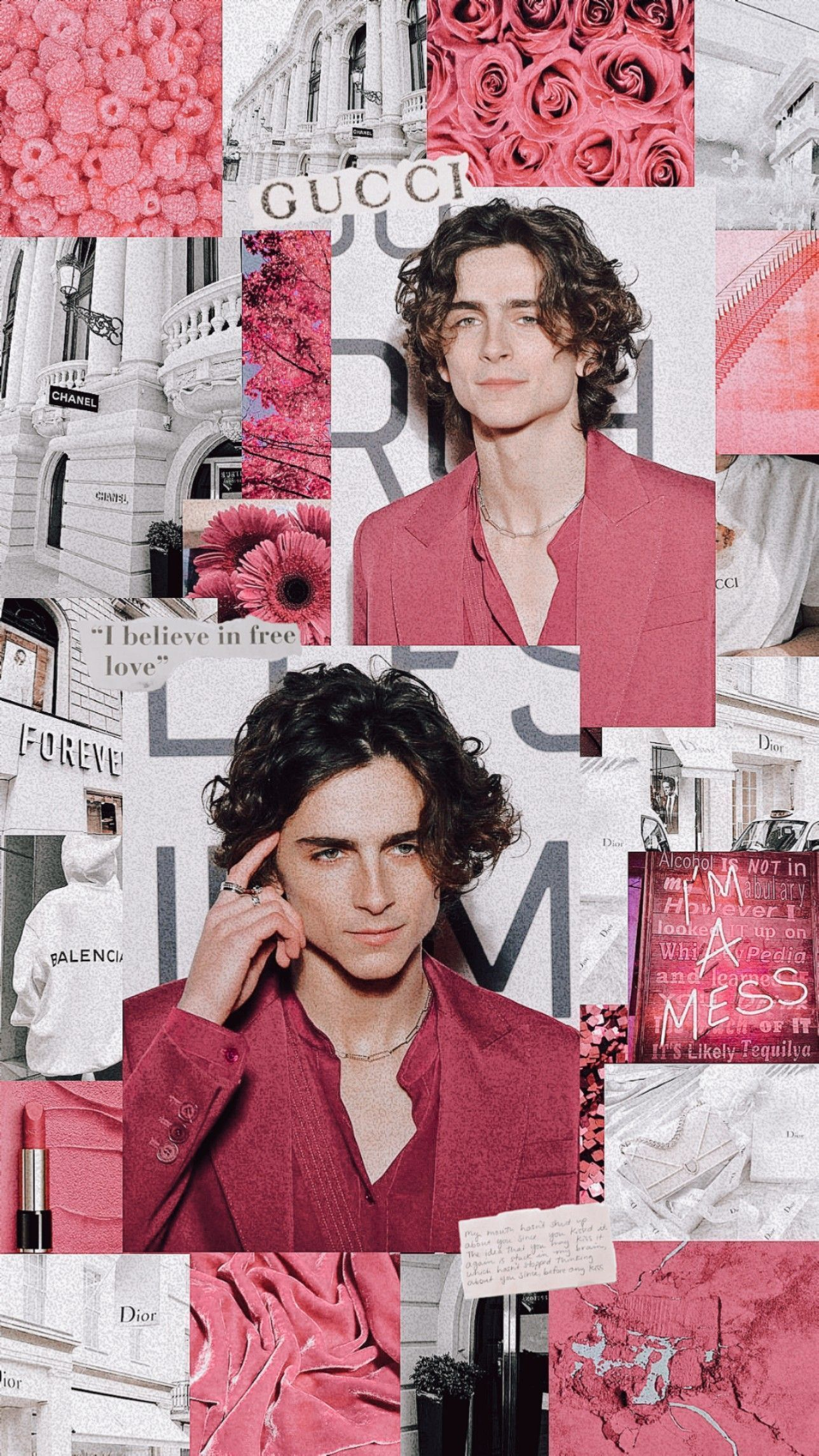 Aesthetic Timothee Chalamet Quotes