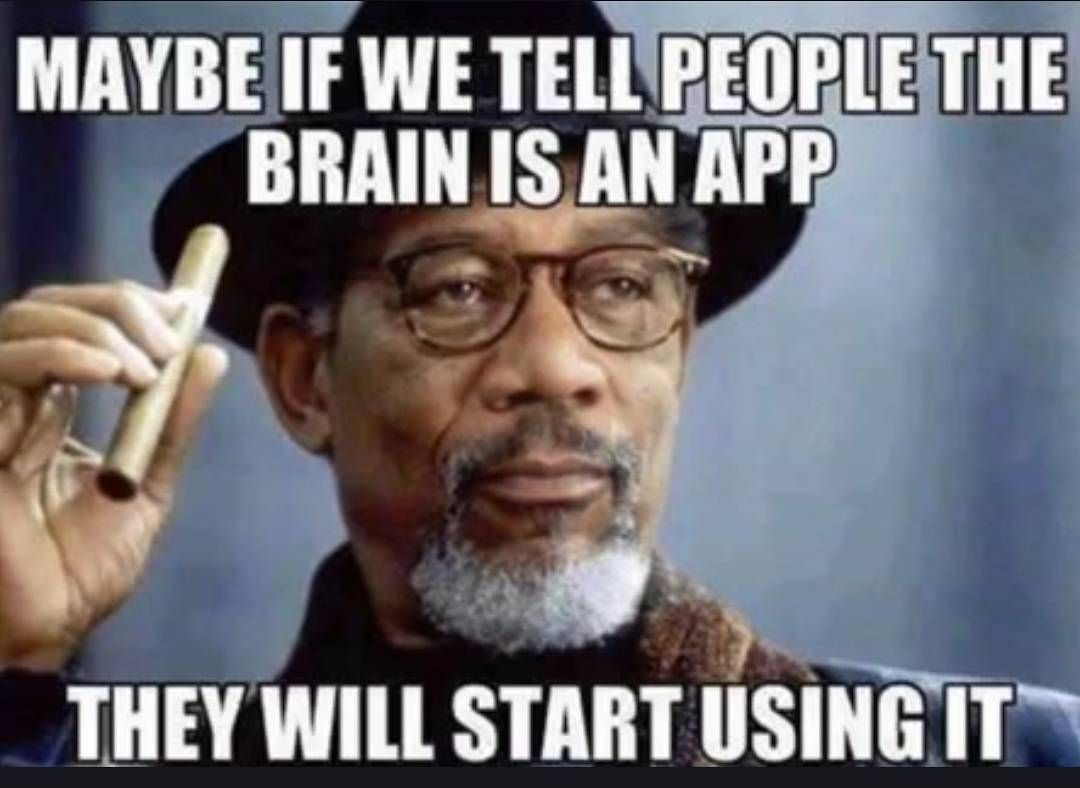 Funny Meme Good Day : Truth your brain app download funny funnymeme