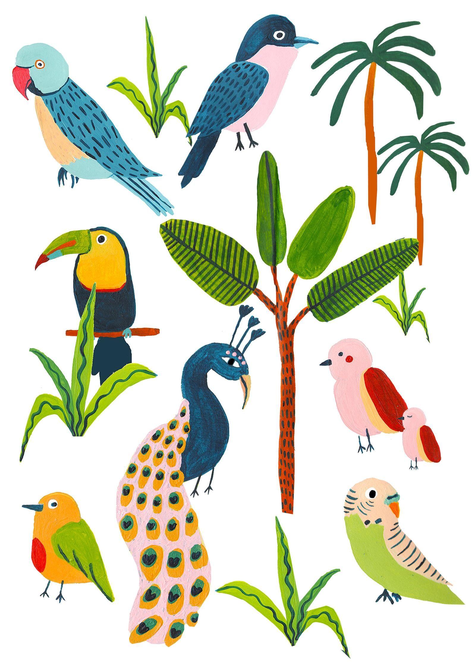 тропическая птица рисунок бесплатно открытку для