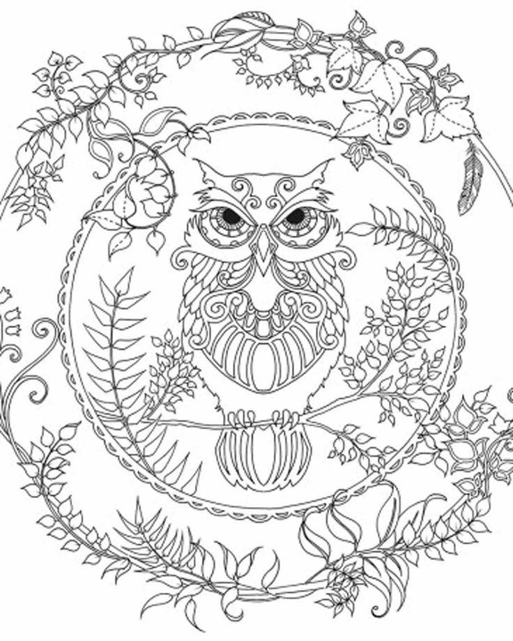 Owl design Nature Mandalas printable colouring page or