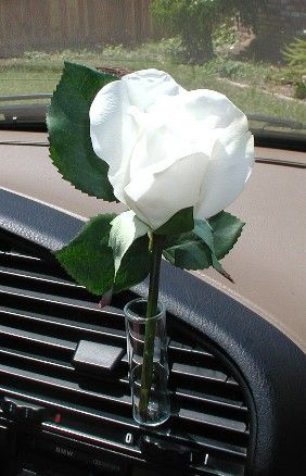 Auto Vase White Rose Volkswagon Bug Rose And Flower