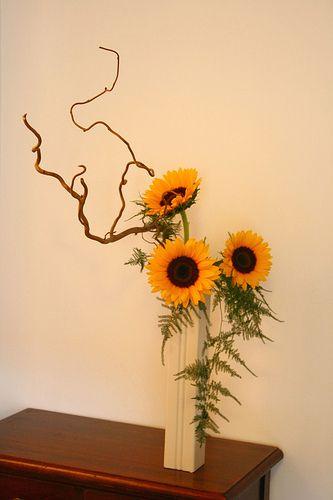 Ikebana di Lucio Farinelli | Flickr: partage de photos!