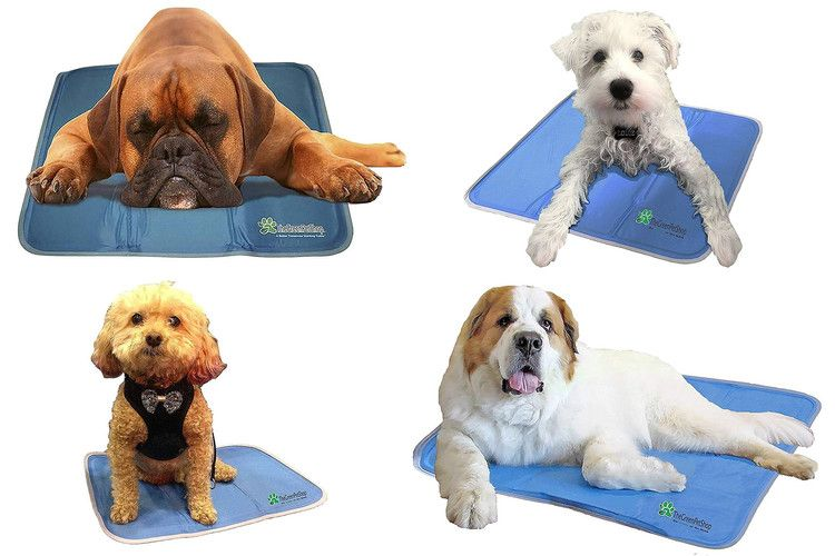 Amazon Shoppers Love This Popular Cooling Pet Pad So Much They Re Buying One For Themselves Too People Pet Pads Pets Cool Pets