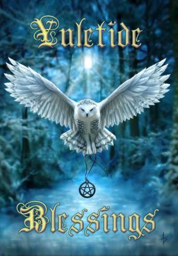 Snowy owl yule card anne stokes owl in flight pentacle pagan snowy owl yule card anne stokes owl in flight pentacle pagan solstice greeting card m4hsunfo