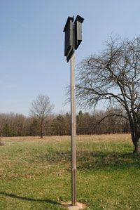 Having bats in your yard cuts down on the number of ...