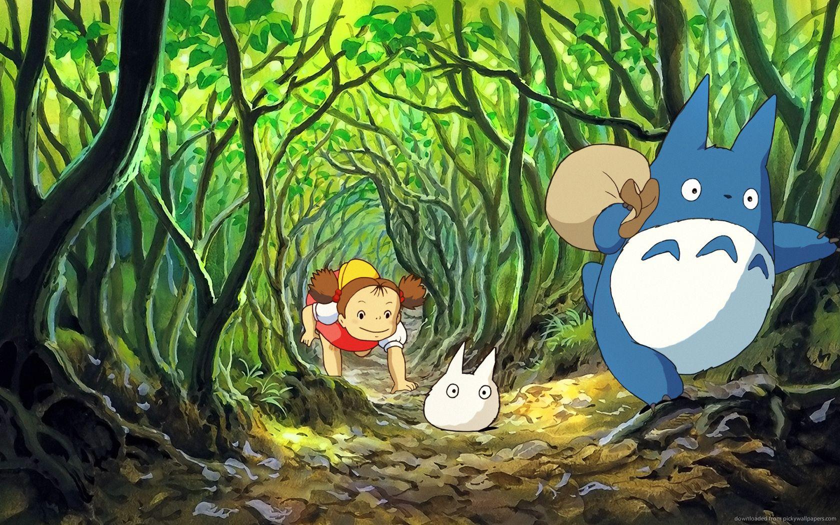 Pin by Gabe Waldron on Ghibli Totoro, My neighbor totoro
