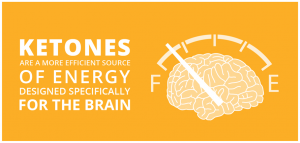 Ketones, Glucose and Alzheimer's Disease | Fuel For Thought®
