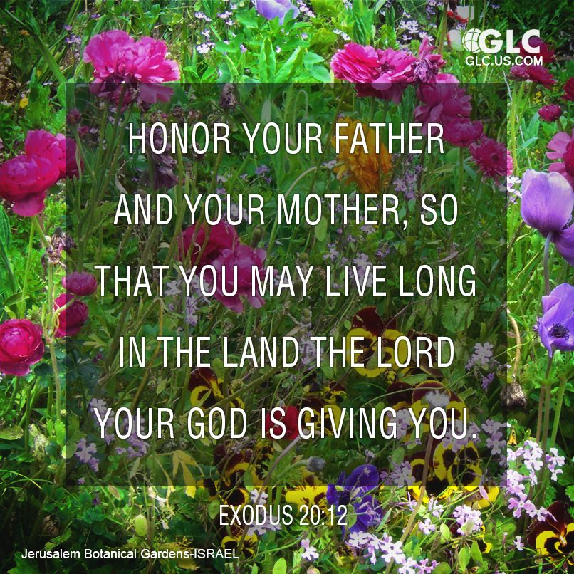 Honor Your Father And Mother Quotes Daily Inspiration Quotes
