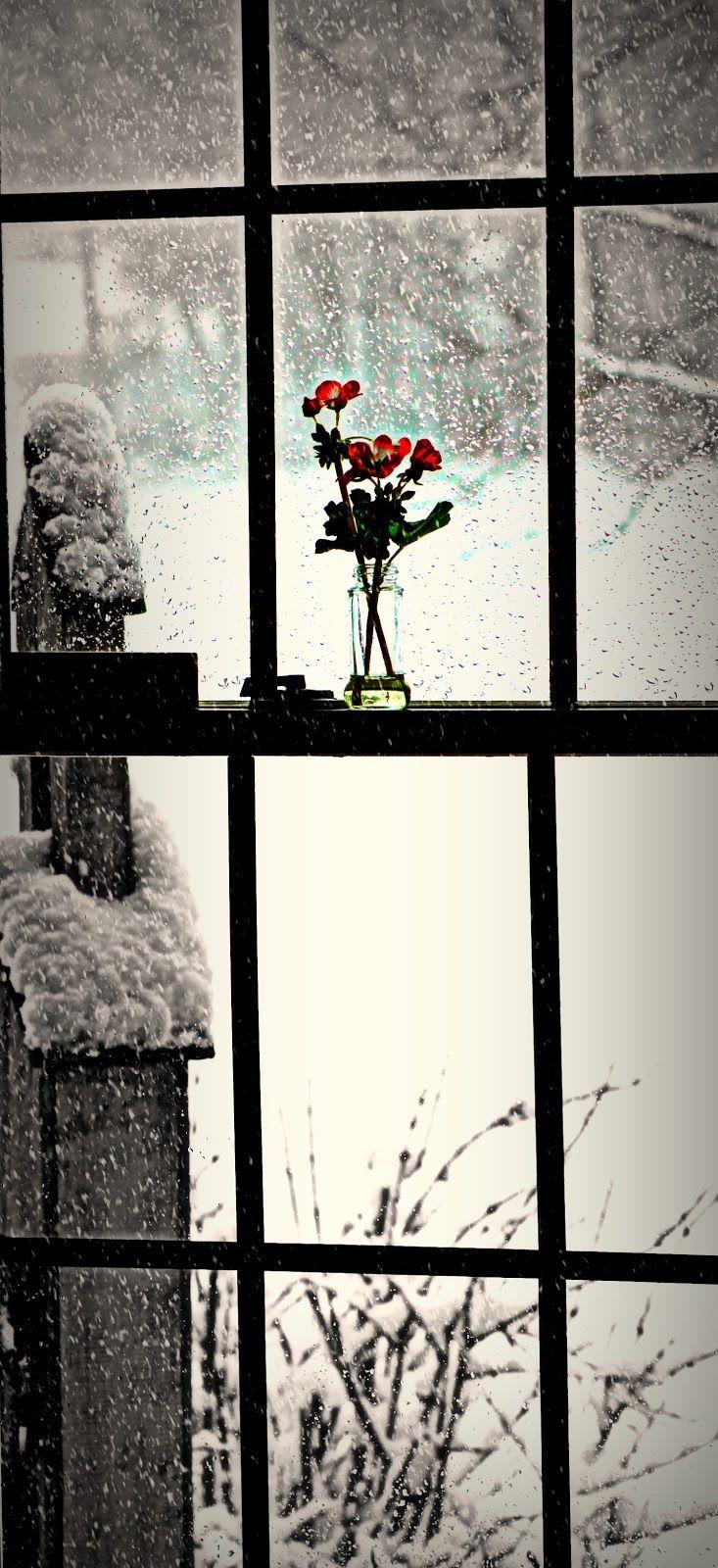 my country living via pinterest winter wonderland. Black Bedroom Furniture Sets. Home Design Ideas