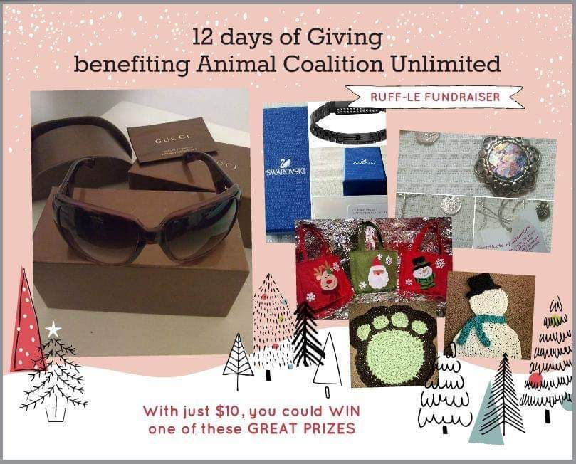 five below gift card balance online