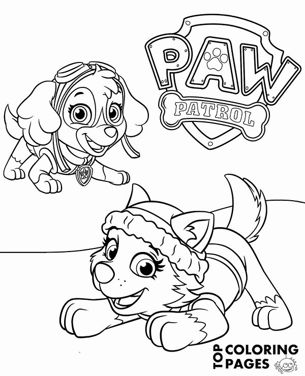 Paw Patrol Skye Coloring Page Beautiful Everest And Skye On Printable Paw Patrol Coloring Page Paw Patrol Coloring Pages Skye Paw Patrol Paw Patrol Coloring