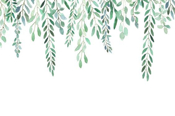 All About Leaves Watercolor By Mariepierlaf On Creativemarket