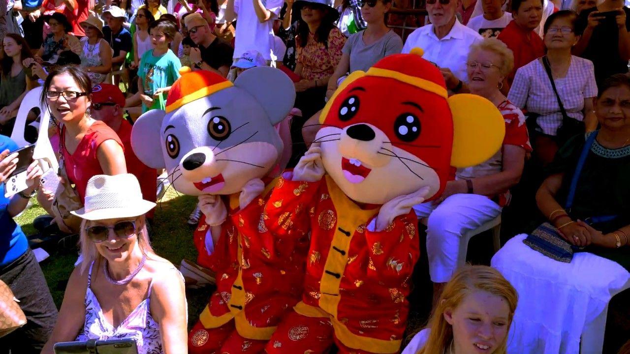 Lion Dance Yarn Yee Tong Chinese New Year Fair Perth CNY