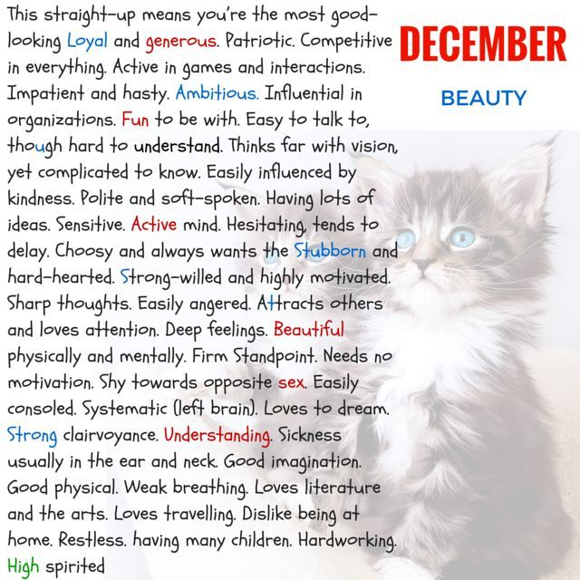 cat horoscope personality test