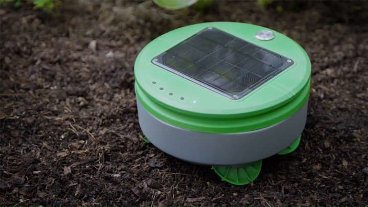 meet tertill a cute little robot that roams around your garden and rh pinterest com