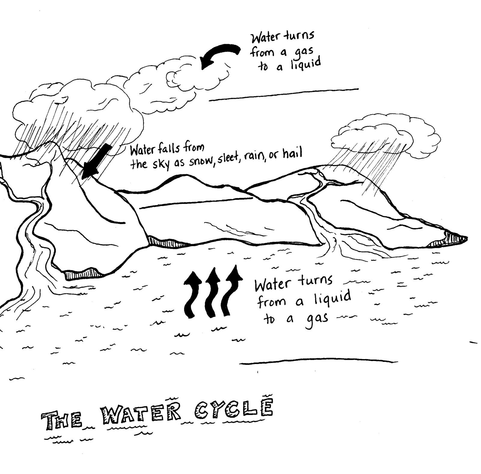 Water cycle diagram for kids black and white science pinterest water cycle diagram for kids black and white ccuart Images