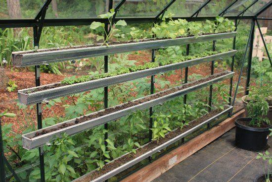 Greenhouse Gardening in the Pacific Northwest – Garden Greenhouse Plans