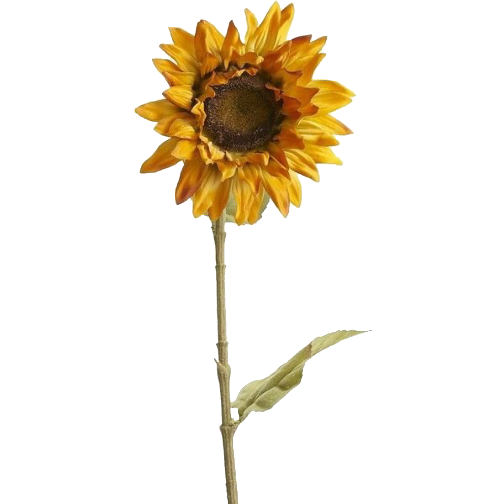 Pin By Jo On Pngs Faux Sunflower Plants Yellow Aesthetic