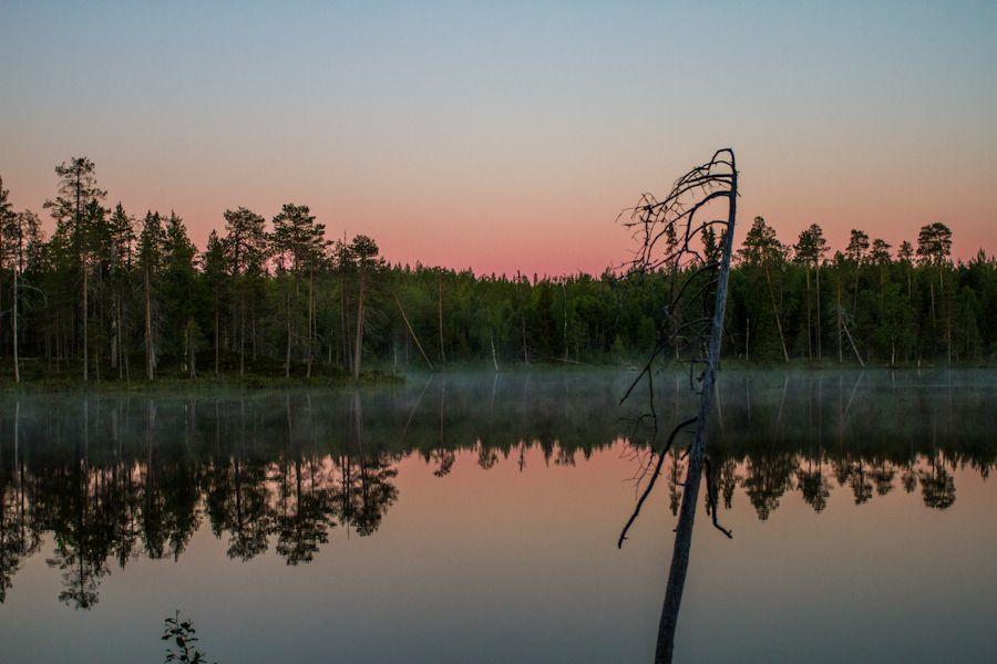 Silence, Kuusamo, Lapland, Finland, July 2012 by Heikki Rantala