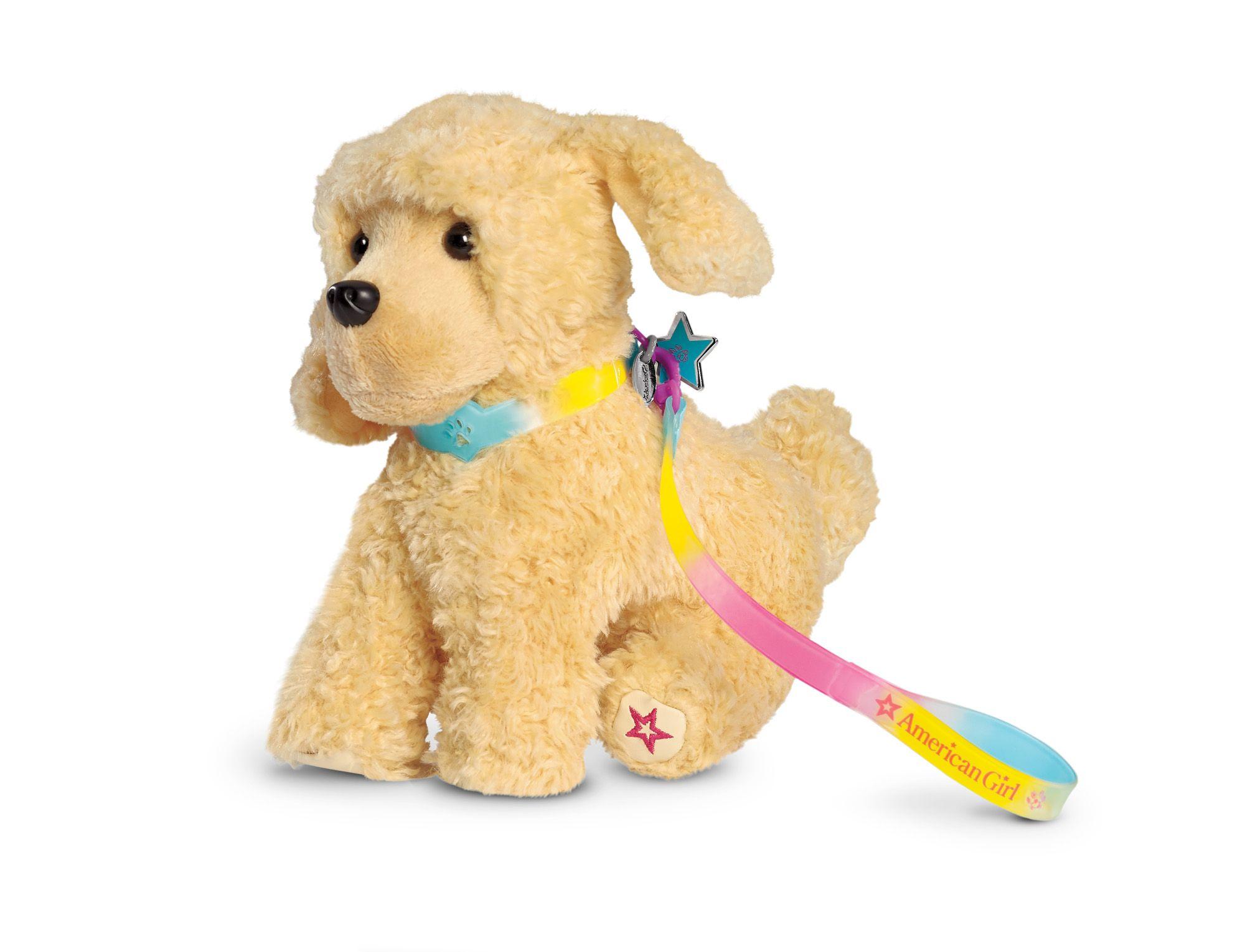 Rainbow Collar & Leash We ♥ Pets Pinterest
