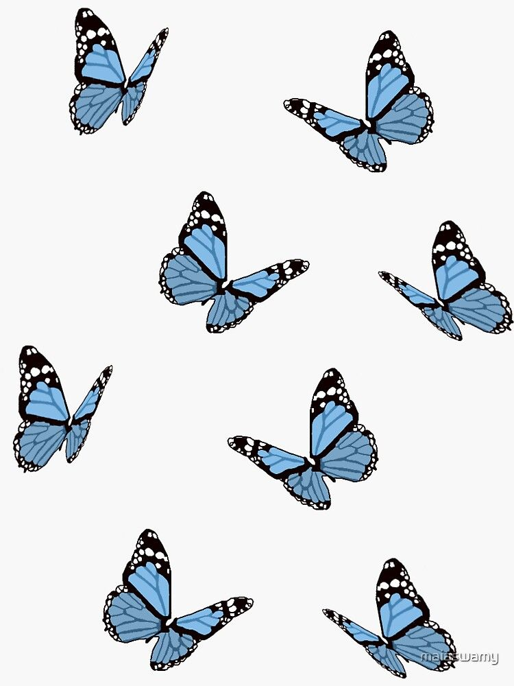Cute Butterfly Blue And White Background Aesthetic Trendy Cool Wallpaper Blue Butterfly Wallpaper Baby Blue Aesthetic White Background Wallpaper