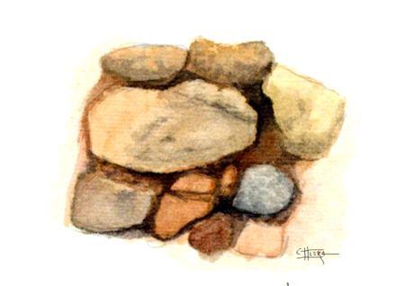 Piedra seca. Acoge vida La vieja tapia.