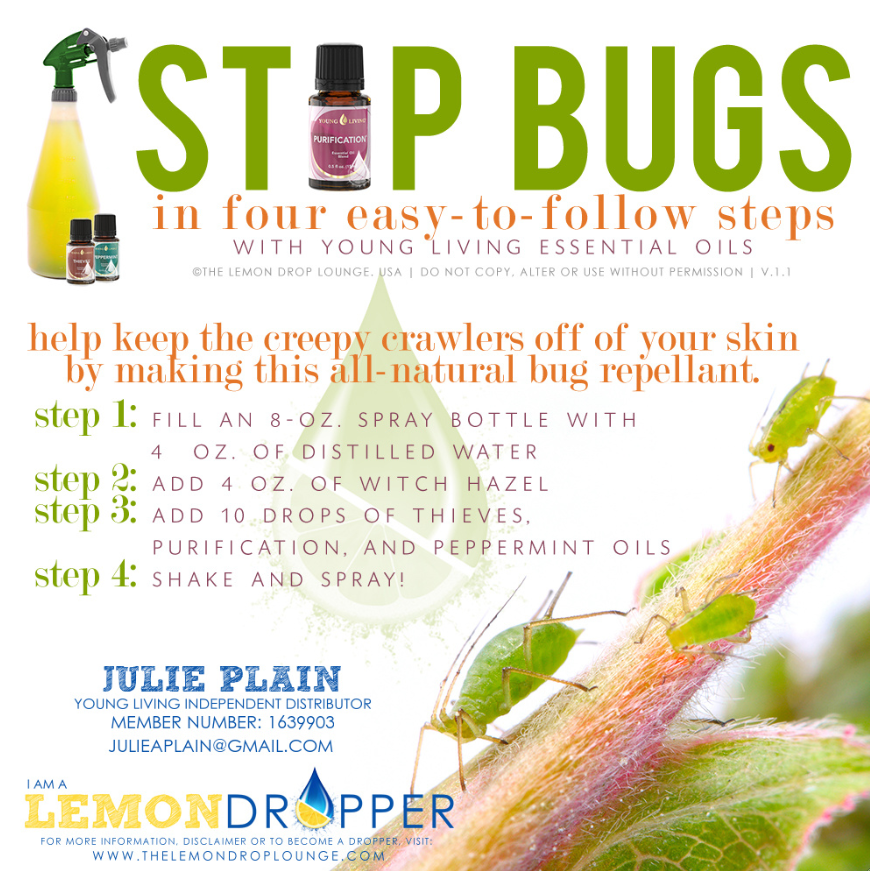 Young Living Essential Oils Bug Spray Oilymommie