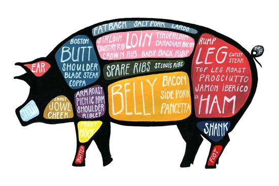 Butchering Diagram Pig Jpg 550 367 Pixels Butcher Diagram Pork Butchery