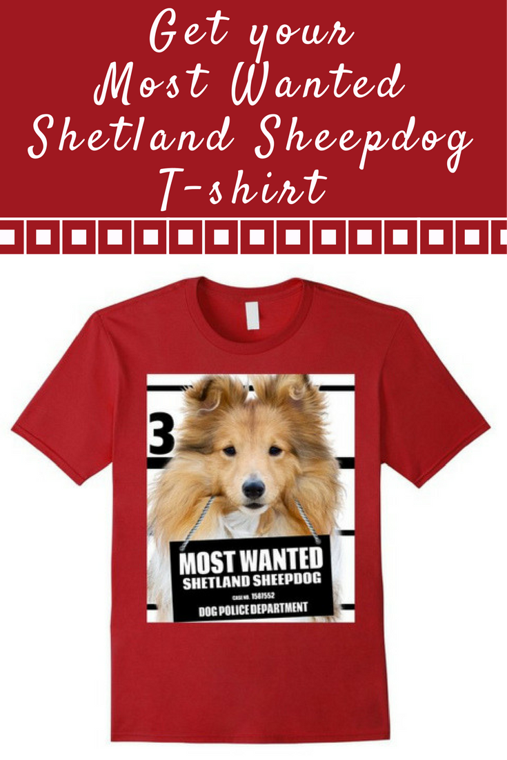 Most Wanted Shetland Sheepdog T-shirt - Dog Tee Shirts -- 100% Cotton. Imported. Machine wash cold with like colors, dry low. Anvil relaxed fit, black, royal blue, green grass, white, red (cranberry), crew neck tee, sayings, quotes, unisex, man, women, girls, boys. Lightweight, Classic fit, TearAway label, Double-needle sleeve and bottom hem. Dog Lover t shirts, Dog Mugshot t-shirts, Shetland Sheepdog tee shirts, with graphics. 4.5 oz 100% Combed Ringspun Cotton,machine wash cold with like…