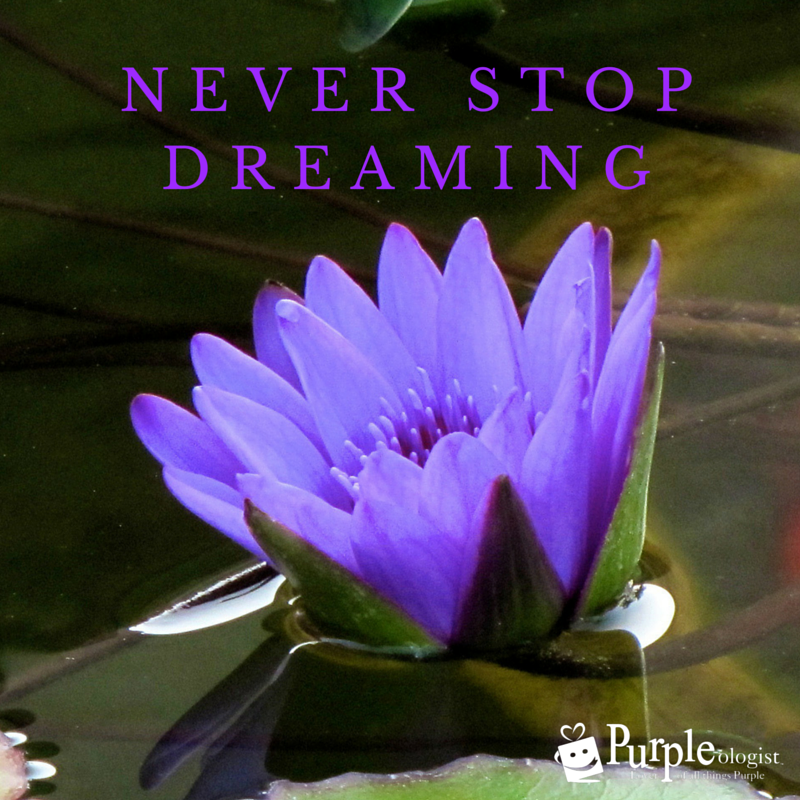 Never Stop Dreaming! Purple Quote Purple quotes