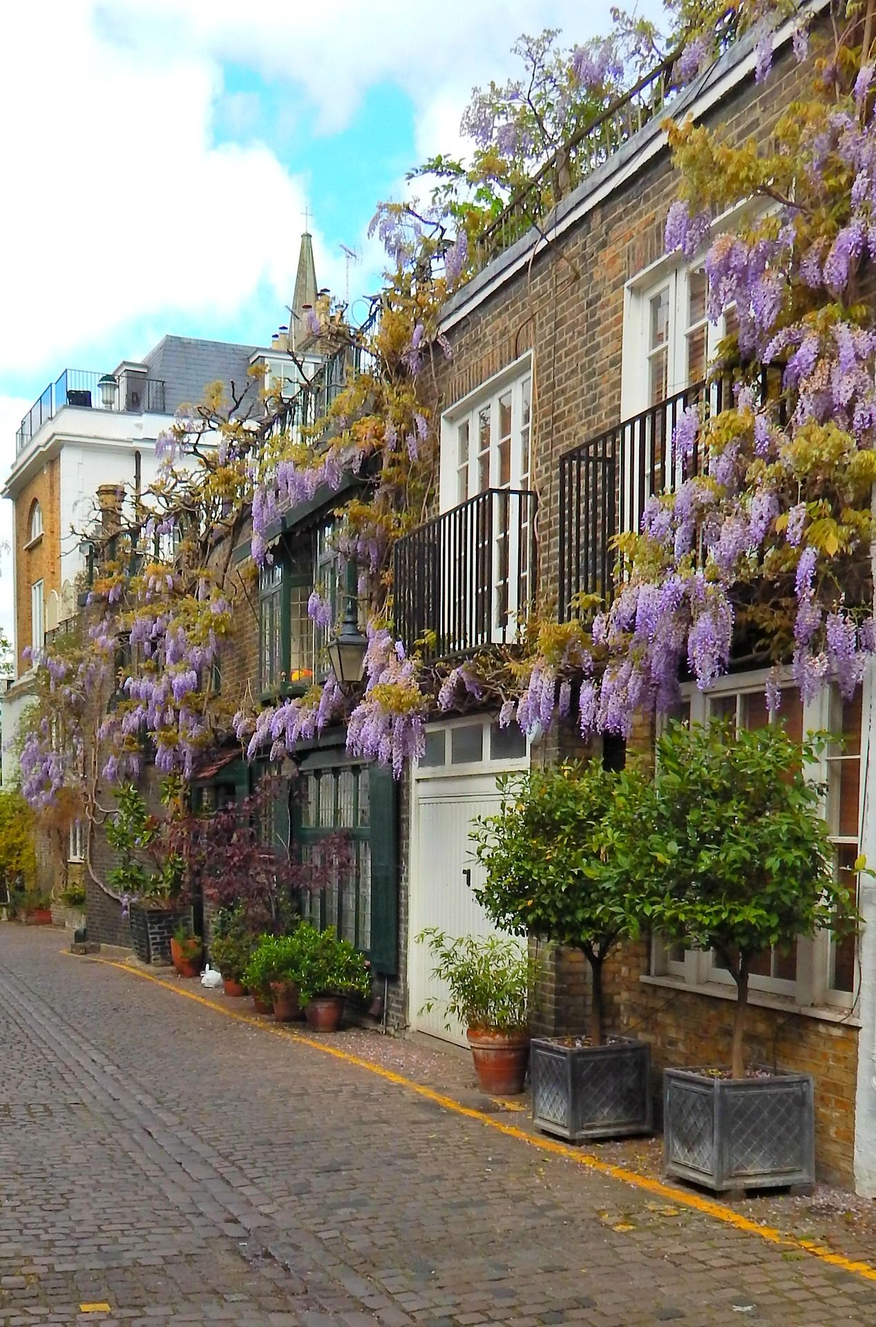 London Street Style With Camille Charrière At London: Blue Wisteria In Bloom At Kynance Mews, Kensington, London