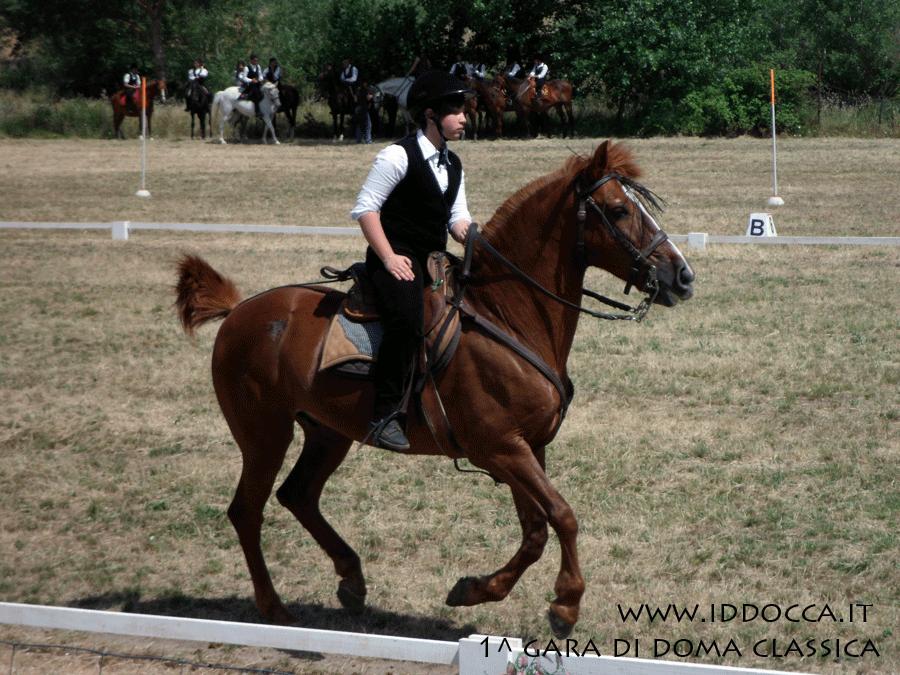 Nurallao 30 Giugno 2013: Giovane fantino  (Nurallao June 30, 2013: Young jockey)