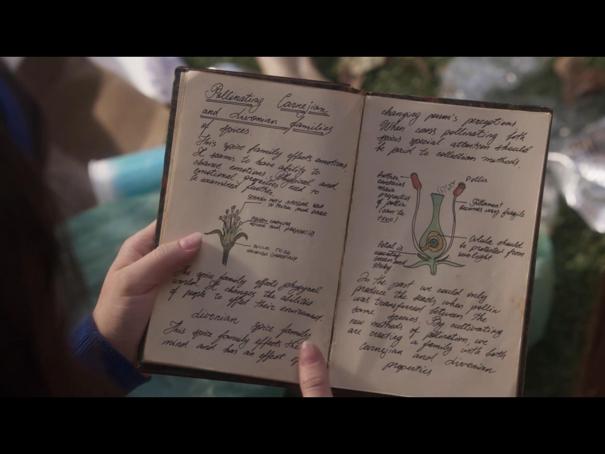 Gina Silvers Just Add Magic Magic Recipe Ads
