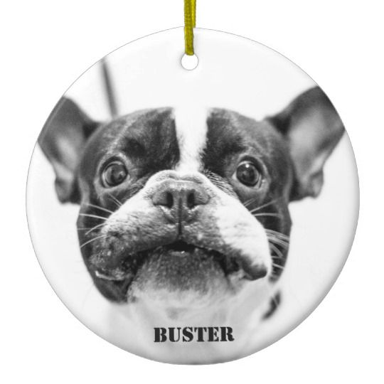 French Bulldog Ornament Add Custom Photo Zazzle Com French Bulldog French Bulldog Puppies Cute French Bulldog