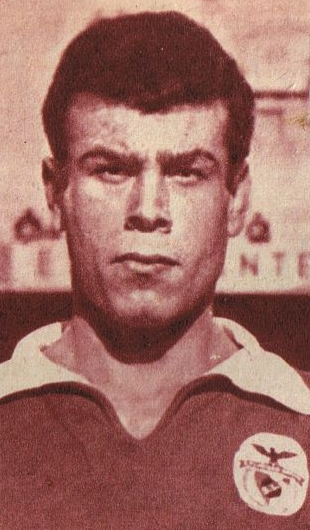 Pedras - SL Benfica