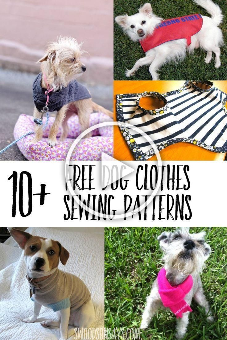 Great list of free printable dog clothes patterns to sew So many options for how to sew dog clothes with free tutorials for all sizes