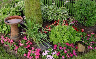 Neat Bird Bath Mixed In With Shade Garden Plants