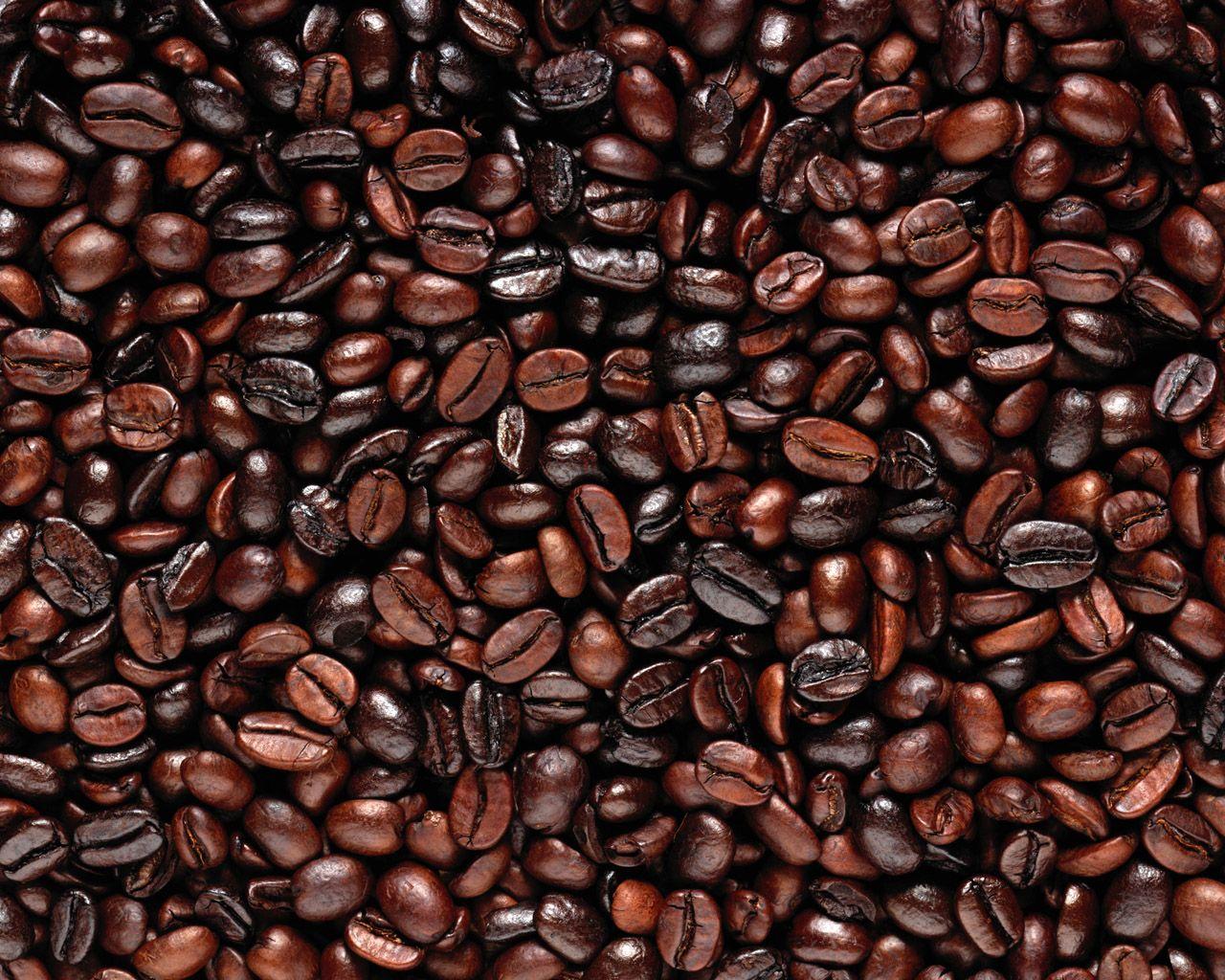 Coffee Beans Brown Organic Coffee Beans Arabica Coffee Beans Organic Coffee
