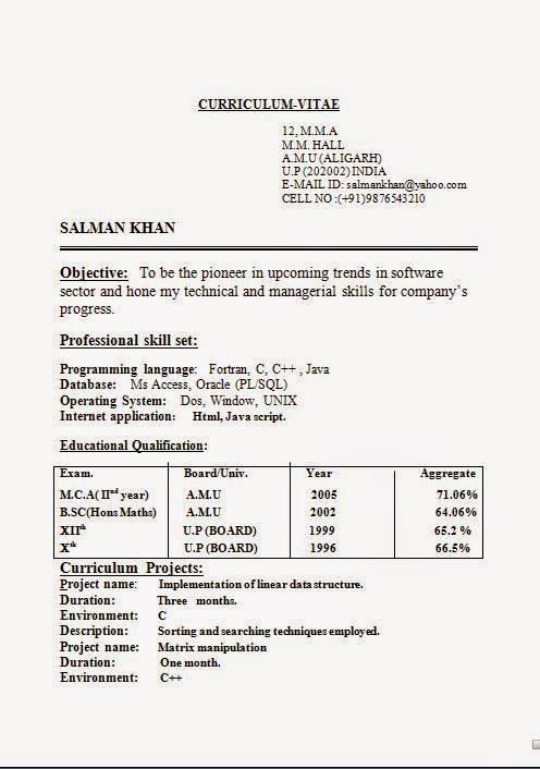 format of resume in word Sample Template Example ofExcellent CV ...