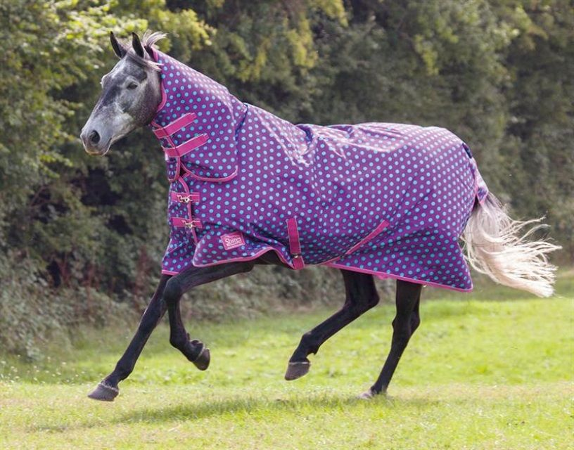 Combo Turnout Rug 61 99