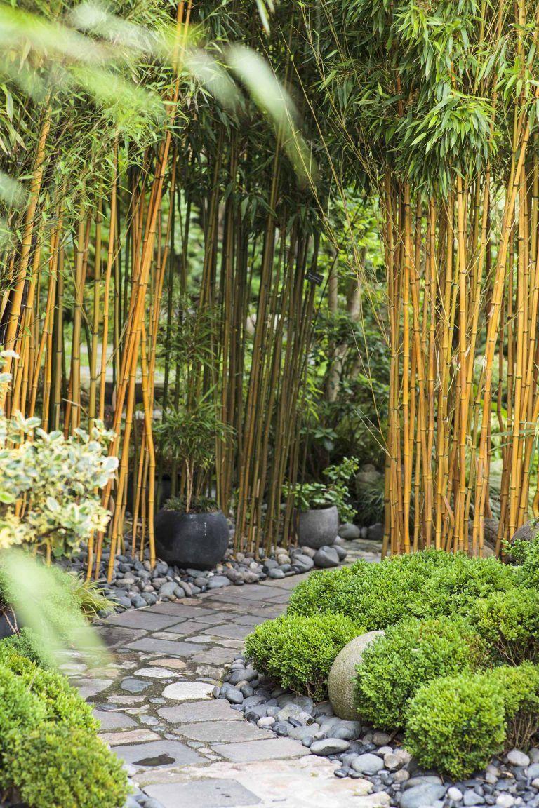 Serenitejardins Developpement Jardinier Paysagiste