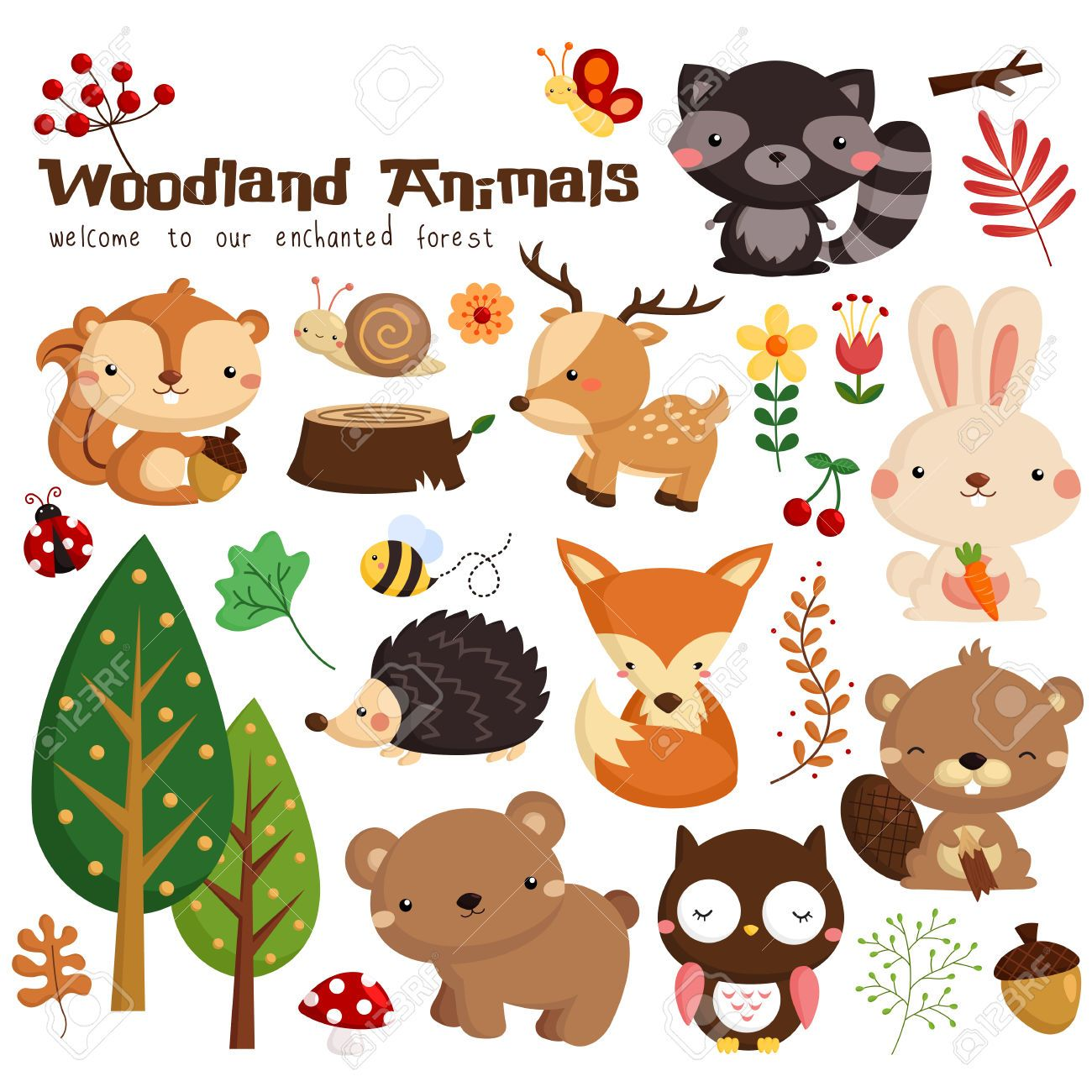 Waschbär Teppiche Woodland Vector Set Icons Pinterest