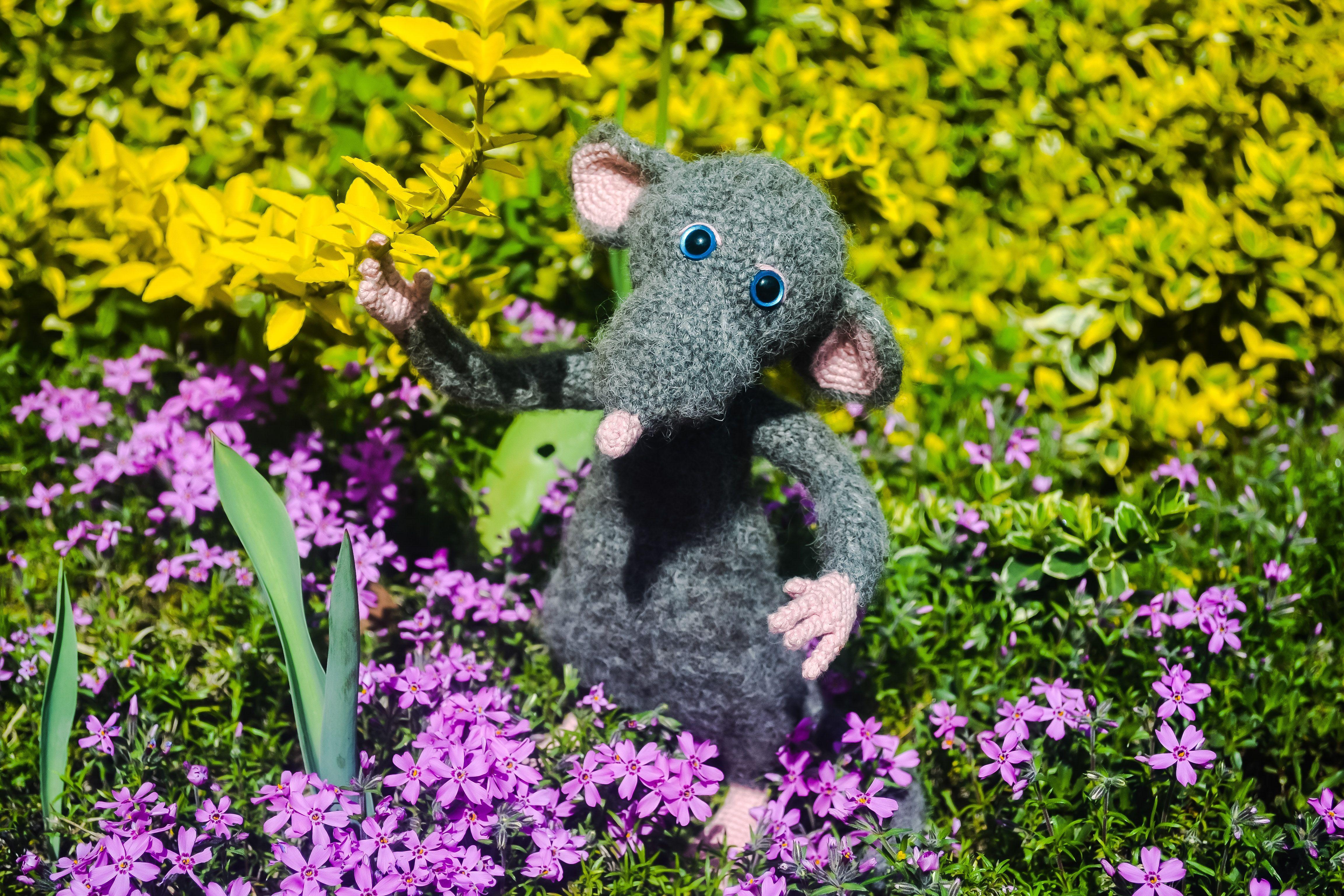 Rat - Chef Mouse Ratatouille 7036 – GOGIVES | 3072x4608