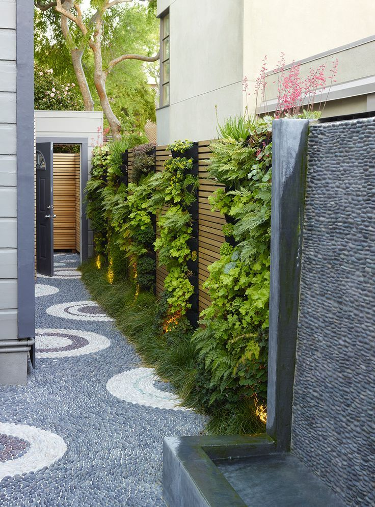 Photo of Attach vertical garden to privacy fence or brick side of house using pallets, et…