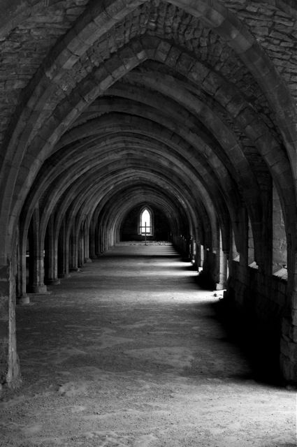 The undercroft, Fountains Abbey, Ripon, North Yorkshire, England